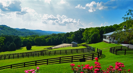 Luxury Equestrian Estate