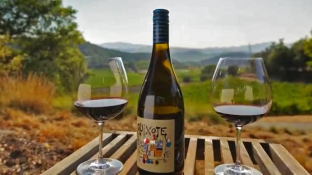 Quioxte Winery Estate