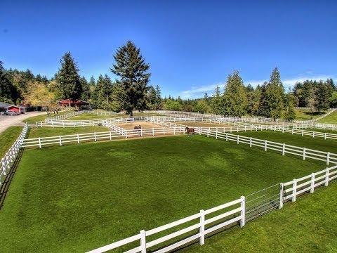 Paddock Wood Farm