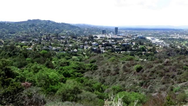 Own your piece of the Hollywood Hills