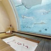 Luxury Bathroom with Fish