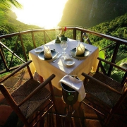 Breakfast Dining in the Jungle