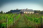 75-Acre Vineyard Lifestyle SOLD!