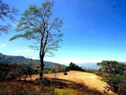Fabulous Lot On Top Of Mountain For Development In Alajuelita