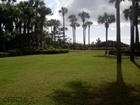 Oceanfront Homesite - Sea Pines