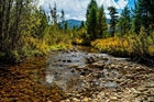 Over 50 Acres Between Rocky Mountain National Park and Grand Lake