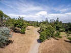 BUILD YOUR DREAM HOME IN A HIGHLY DESIRABLE AREA OF LOS ALTOS HILLS