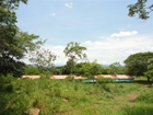 Processing Farm With 126 Hectares In Guanacaste For Sale