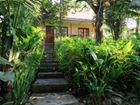 Beautiful Hotel In The Heart Of The Jungle - Manuel Antonio