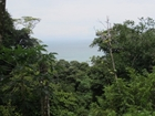 Development Ocean View Property Manuel Antonio