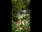 Famous South Pacific Waterfall Estate