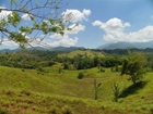 1083 Acre Farm Near Quepos