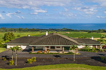 Luxury auction Papaikou, Hawaii homes